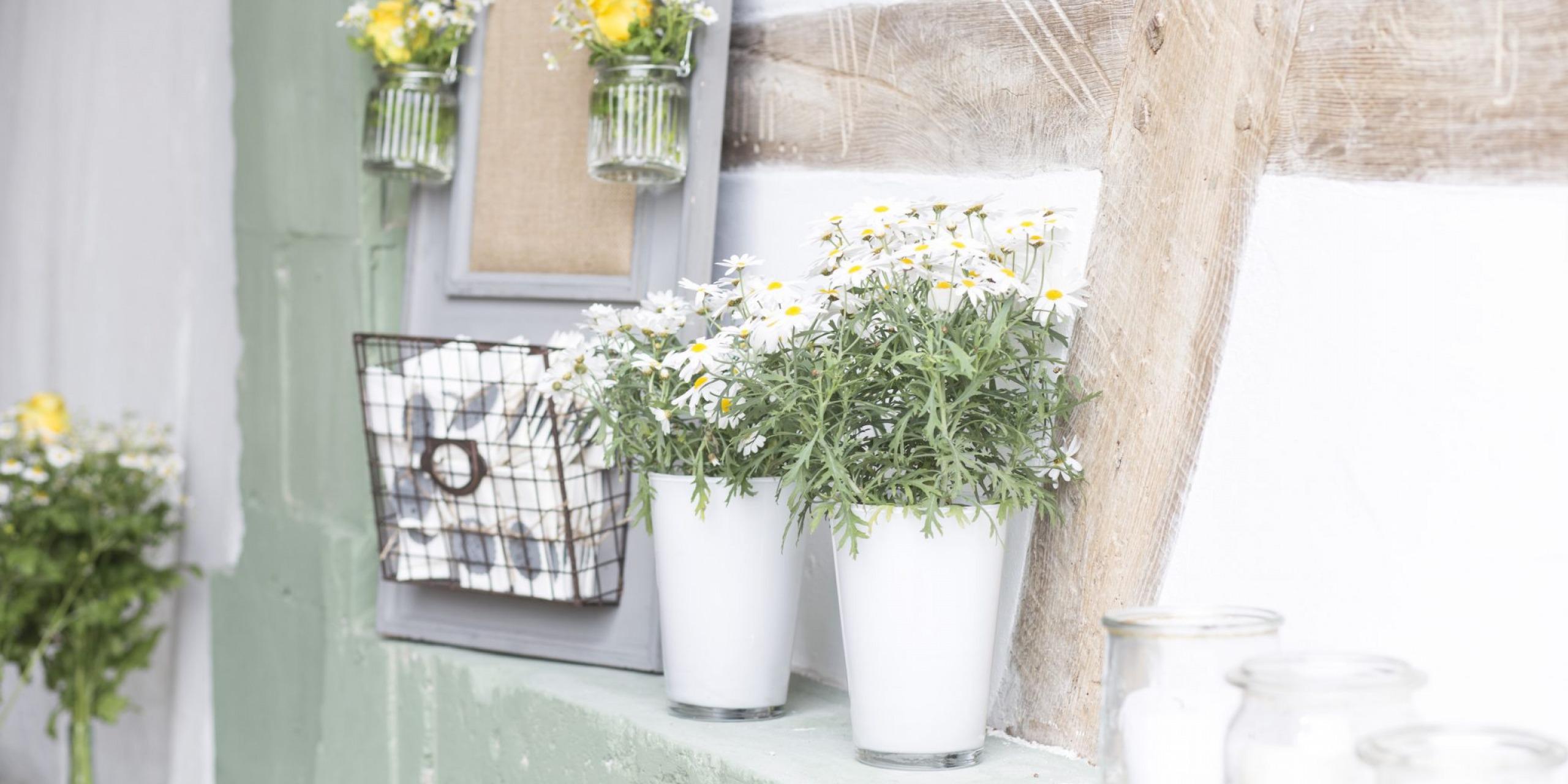 Hochzeit von Jannine und Christian in Münster: Blumen an einer Steinmauer