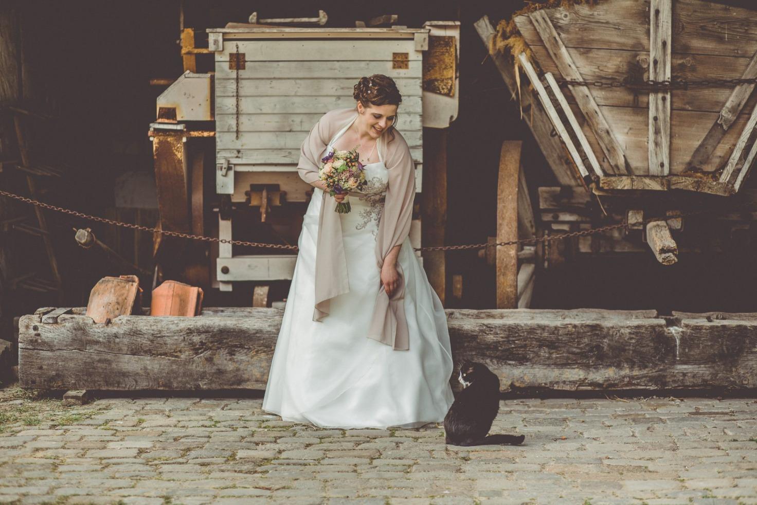 Hochzeit von Bea und Matt in Münster: Brautpaar spielt mit der Katze