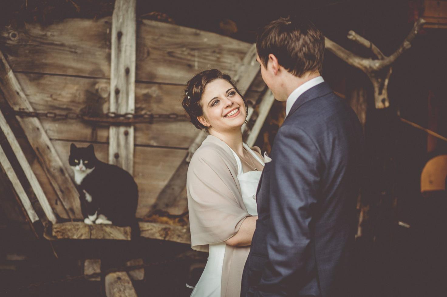 Hochzeit von Bea und Matt in Münster: Im Hintergrund des Brautpaares sitzt eine Katze